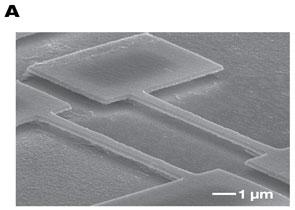 A two-channel piezoelectric nanoscale 'cochlea'