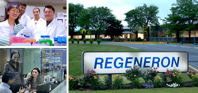 5 Life Science Companies You Definitely Want to Work For: Regeneron