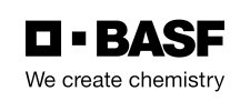 i19 BASF captis executive search management consulting leadership board services