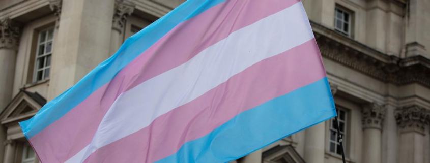 191016112317 transgender flag stock super 169 captis executive search management consulting leadership board services