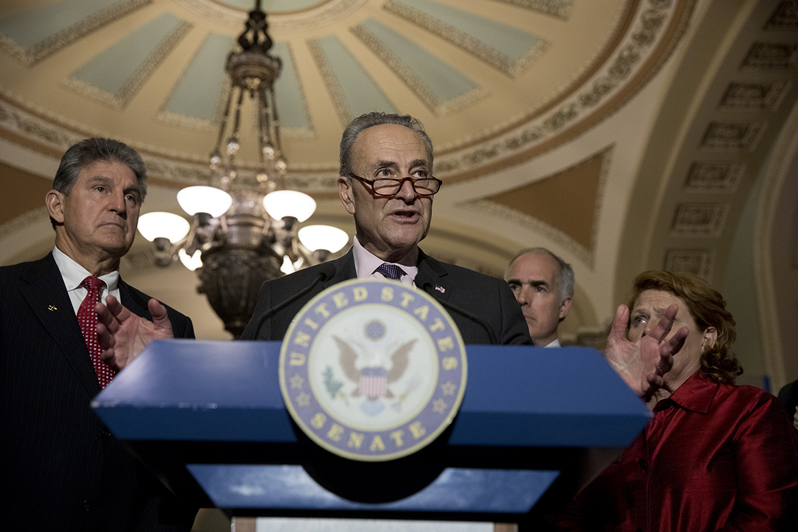 Senate Minority Leader Chuck Schumer, flanked by Sens. Joe Manchin, Bob Casey and Heidi Heitkamp, speaks to the media.