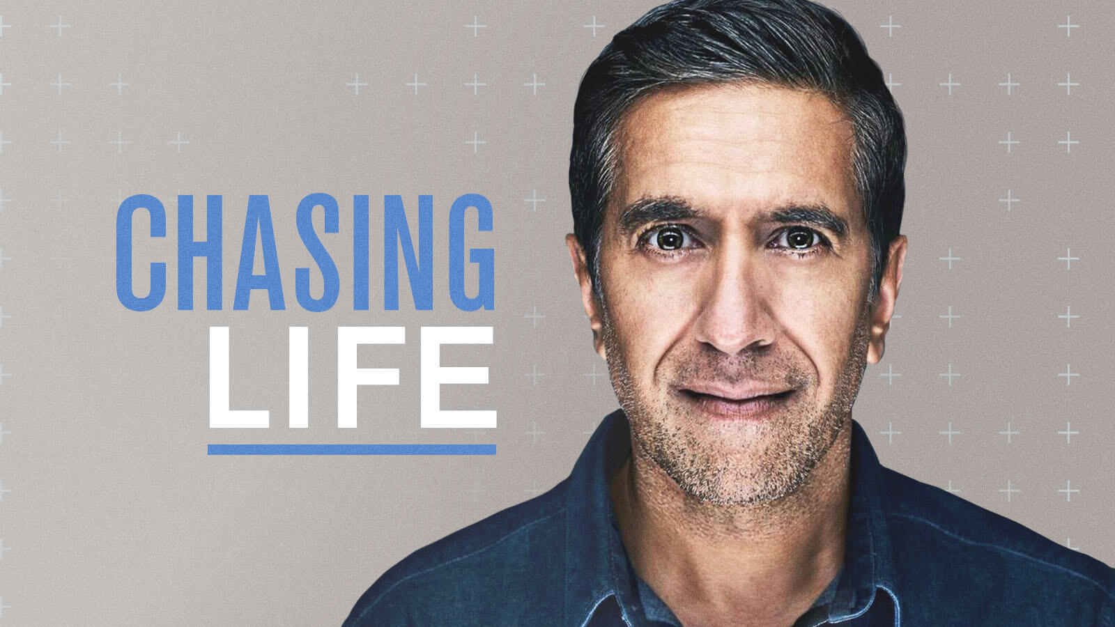chasing life captis executive search management consulting leadership board services