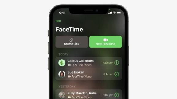 210608163615 facetime share call live video 1 captis executive search management consulting leadership board services